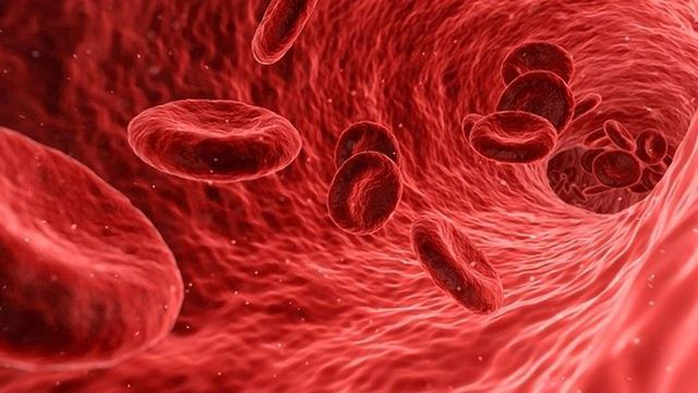 DNA Fragments Trigger Inflammation in Sickle Cell Disease