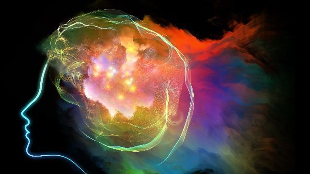 Psychedelic Study Links Brain Activity and Behavior