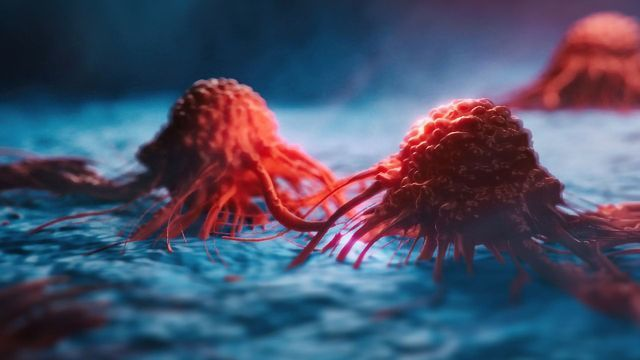 Cancer Cells Go Dormant To Dodge Chemotherapy