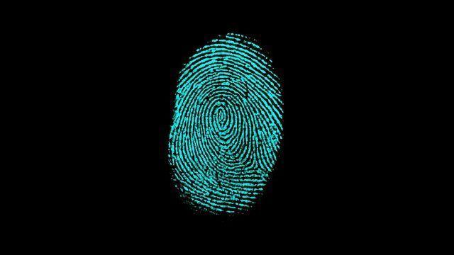 Fingerprints Enhance Our Sense of Touch