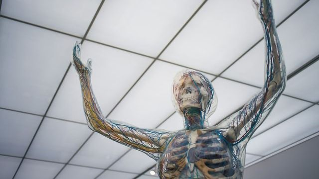 New Bioink Brings 3D-Printing of Human Organs Closer to Reality