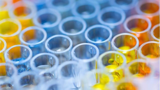 Tips for Successful Immunoassays