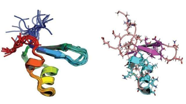 Atomic Techniques Reveal How Environment-Sensing Protein Allows Bacteria To Adapt