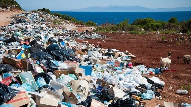 Microplastic Analysis and the Future Detection Landscape
