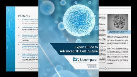 Expert Guide to Advanced 3D Cell Culture