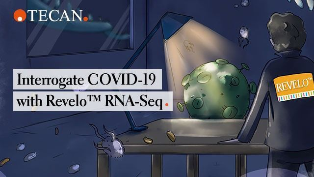 Interrogate COVID-19 With Revelo™ RNA-Seq
