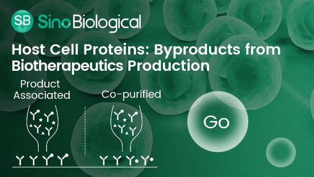 HCPs: Byproducts from Biotherapeutics Production