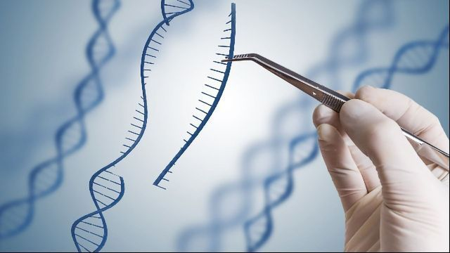 New Generation of siRNA Could Enable New RNA Therapies