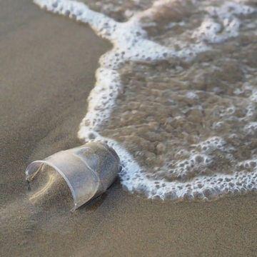 海洋栖息地合成塑料的生物降解