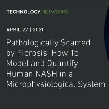 由纤维化造成的病理损伤:如何在微生理系统中建模和量化人类NASH