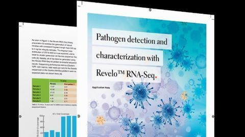 Interrogate the SARS-CoV-2 Genome To Get More Answers