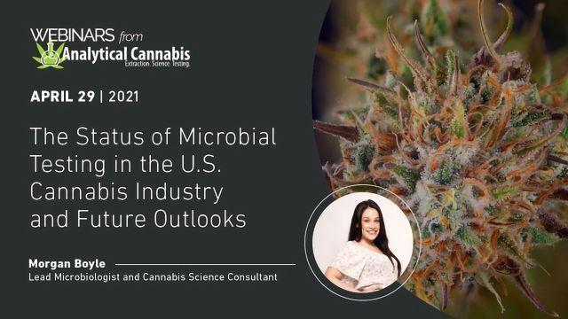 大麻产业和未来前景的微生物检测状态