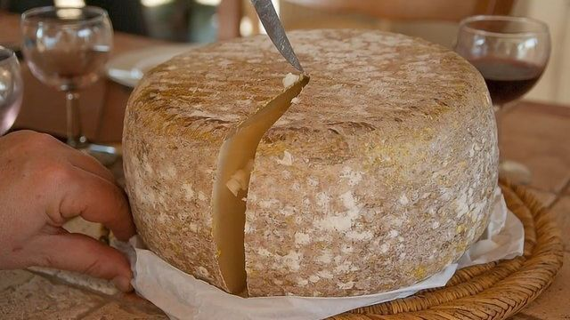 给你的牛奶加点奶酪