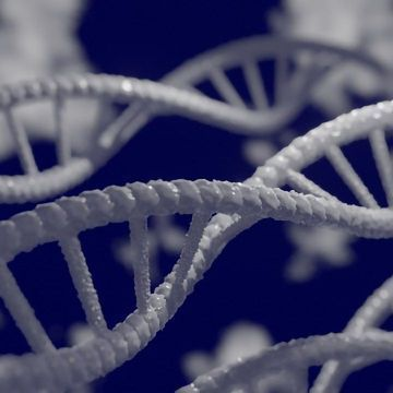 Mapping Epigenetic Information in Single Cells