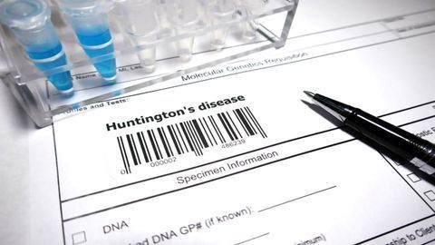 Minipig Study Tests Gene Therapy for Huntington's Disease