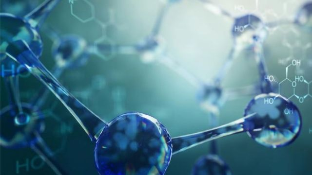 Fragment Screen Points to New SARS-CoV-2 Inhibitors