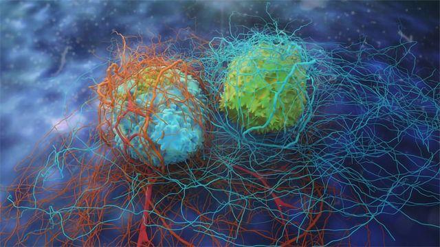 癌症药物发现:靶向治疗的分子之旅