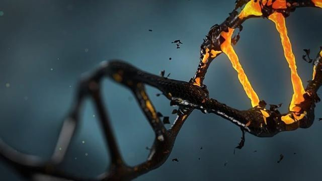 Damage-Sensing Proteins Recognize DNA Breaks