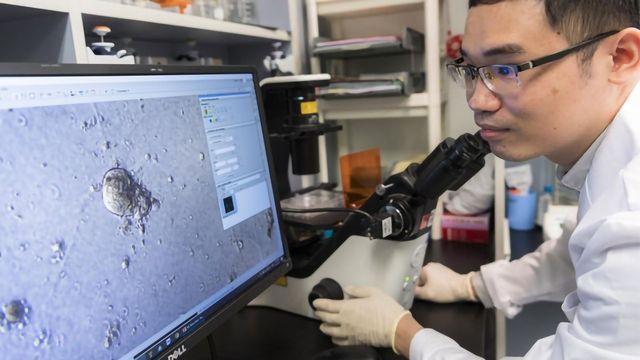 切换乳腺癌基因的超级增强剂发现