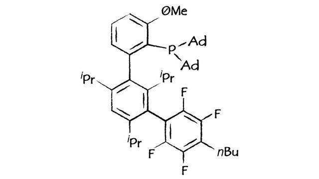 Sinocompound以新的布赫瓦尔德配体和预催化剂扩展范围