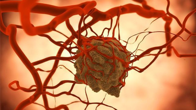 Team Discovers How the Signaling Molecule SHP2 Triggers Cancer