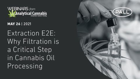 Extraction E2E: Why Filtration is a Critical Step in Cannabis Oil Processing