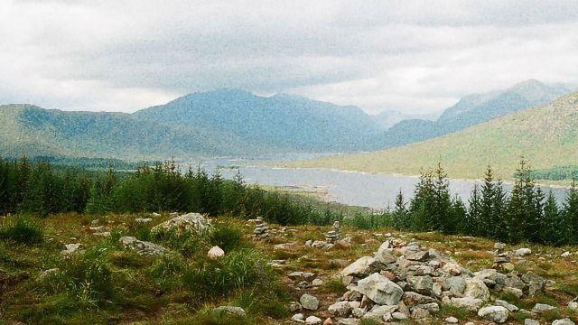 来自苏格兰高地的十亿岁化石,揭示了动物演变中缺失的联系