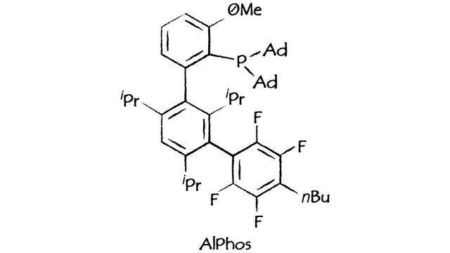 Sinocompound添加新的高级Buchwald配体和催化剂