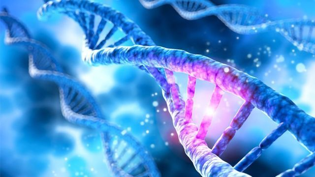 Exploiting Genetics To Improve Cancer Diagnosis and Treatment