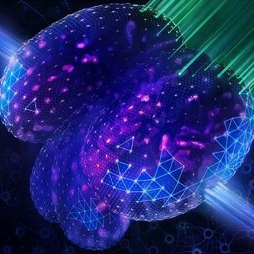 Microscopes Improved With Artificial Intelligence