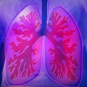 New Mechanism of Lung Tissue Regeneration Revealed