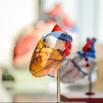 Map of Metabolic Changes After Heart Attack