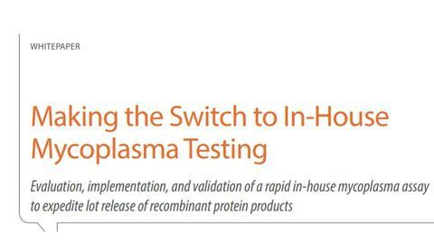 Making the Switch to In-House Mycoplasma Testing