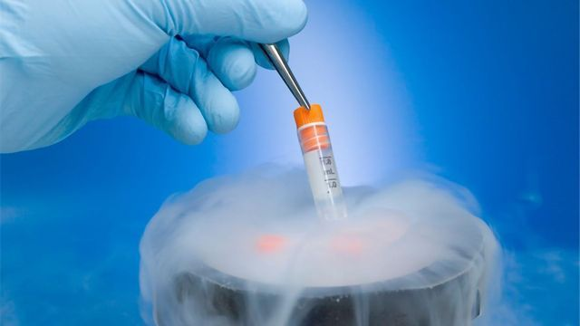 Cryopreservation: Applications and Advances