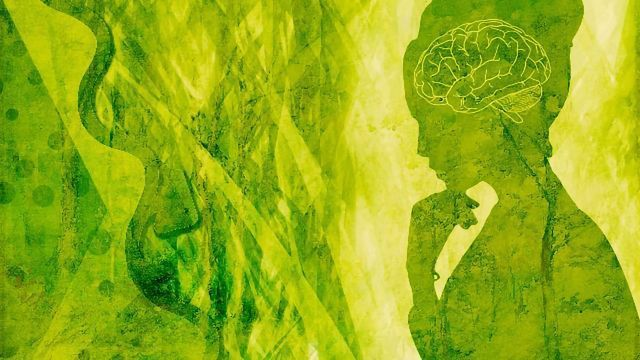 Non-Hallucinogenic Psychedelic Analogs Could Be Game Changers for Neuropsychiatry