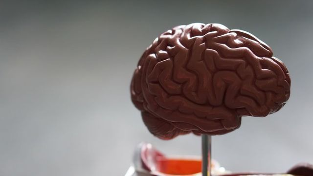 A Link Between Lithium Concentrations in the Brain and Depression