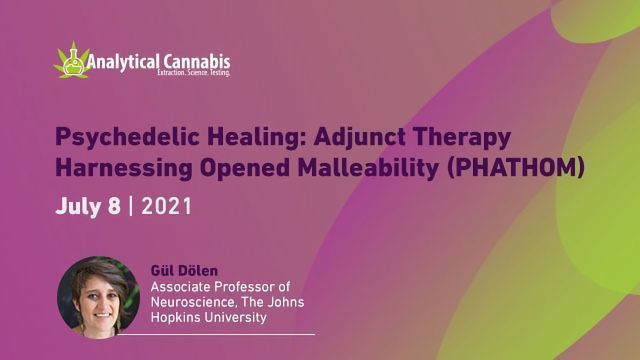 Psychedelic Healing: Adjunct Therapy Harnessing Opened Malleability (PHATHOM)