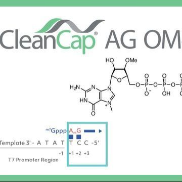 CleanCap® AG (3' OMe) Reagent: Next Generation mRNA Capping Technology