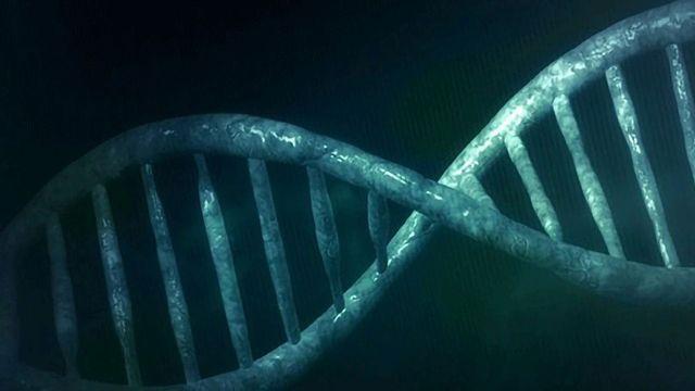 放射治疗后癌细胞基因组会发生什么?