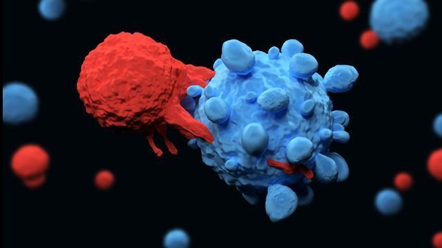 New Macrophage-Based Immunotherapy Could Treat a Broad Spectrum of Cancers