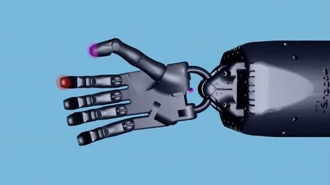 Neural Network Performs Complex Hand Movements in New Simulation