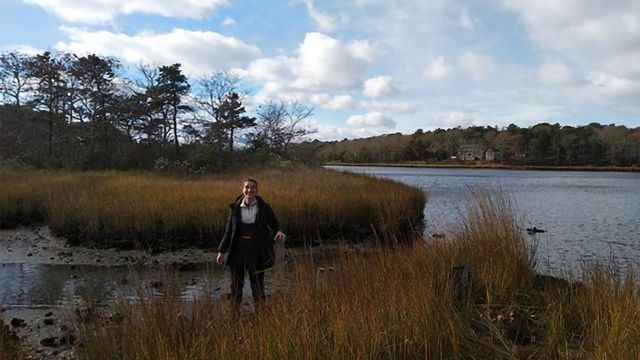 Record of Human Plastic Use Trapped in Salt Marshes