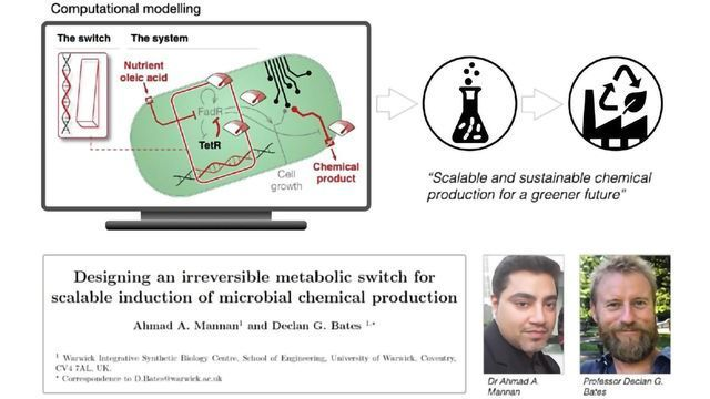 An Efficient Way To Turn Bacteria Into Chemical Factories