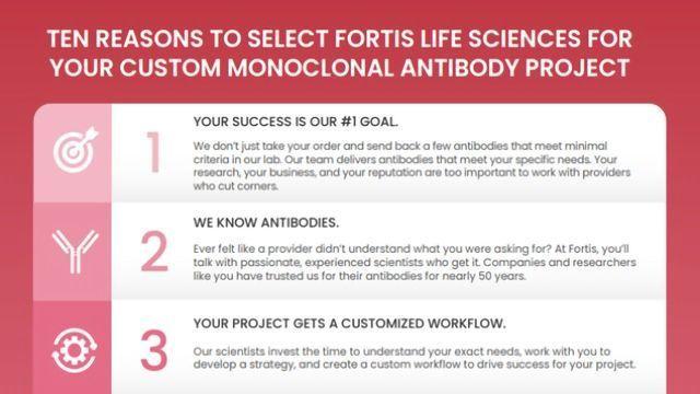 Your Custom Monoclonal Antibody Project