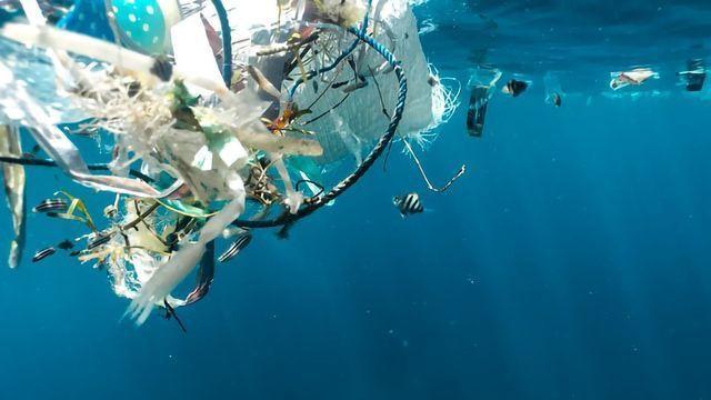 Microbots Designed To Combat Microplastics