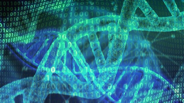 DNA Data Storage – Previewing Files Now Possible