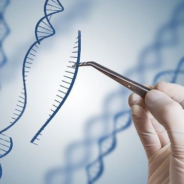 CRISPR Made More Precise by New Algorithm