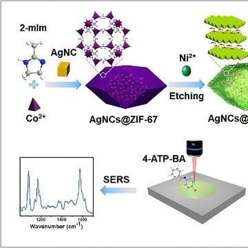 Aldehyde Gas Detection Aided by Novel SERS Sensor