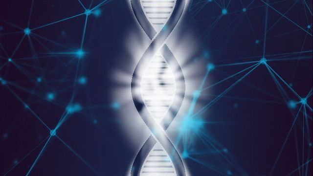 10x Genomics Unlocks Whole Transcriptome Analysis in FFPE Tissues With New Visium Assay