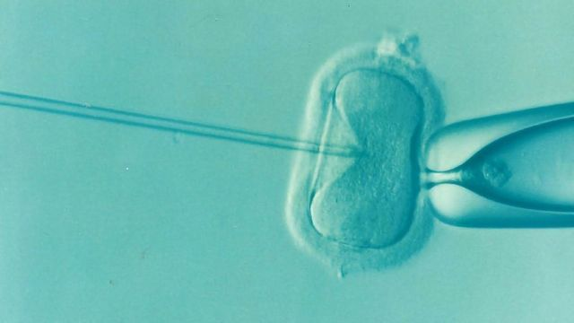 From Research to Entrepreneurship: How One Start-Up Is Working To Optimize IVF Success Rates